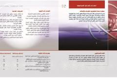 الخطة الإستراتيجية لجامعة حلوان 2015 - 2020